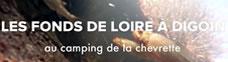 Fonds de Loire au camping la Chevrette